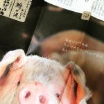 青空レストラン 自然熟成豚 お取り寄せ/通販 青森県鰺ヶ沢町 長谷川自然牧場 十和田ミート8月13日